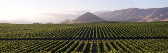 Tilling the soil: Pre-evangelization and Conversion