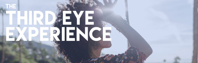 The Third Eye Experience: Manifest from Your Intuition