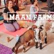 Maan Farms Goat Yoga image