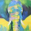 Paint & Sip!Pop Art Elephant  at 7pm $39 image
