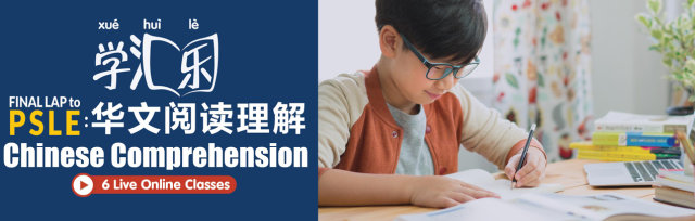 Final Lap to PSLE: Chinese Comprehension Workshop (6 'Live' Online Classes)