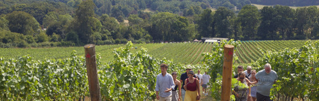 History,Romance and Wine in the Surrey Hills