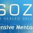 Bethel Sozo Intensive Mentoring image