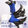 Blue Stockings - 15 November, 7.45pm at National Trust Hatchlands Park image