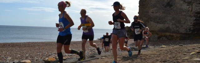 Branches and Bays 10k