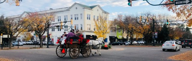 Carriage Rides in Downtown Aiken