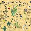 Hedgewitch Herbalism with Maria Billington image