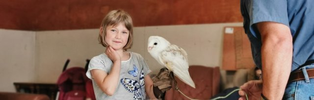 DO Try This at Home! Birds of Prey Experience!