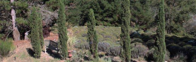 Harvest Fall Picnic Arbor in the Lavender
