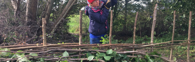 Hedgelaying & Coppicing Training Course