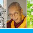 week 25-31 Jan short meditation classes (3/week) image