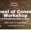 Wheel of Consent workshop + 2 Experimental add on days for Professionals. image