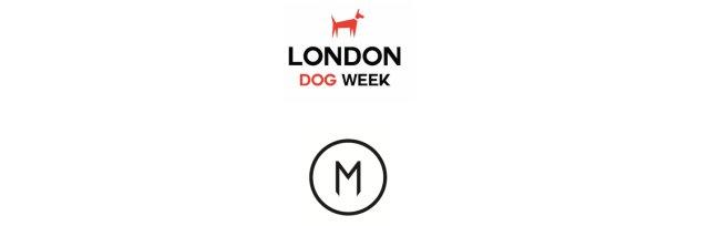 London Dog Week Fashion Show Brunch