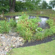 Rain Gardens image