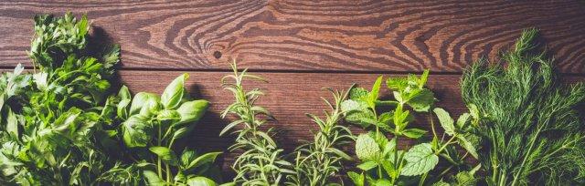 Benefits of Herb Gardening with Rita & Ron