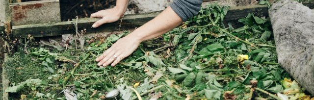 How to Compost like a Pro with The Edible Flower: Online Talk