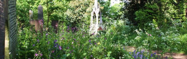 Cemetery Park Online - Discover Our Nature & Heritage