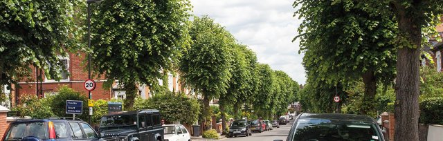 Explore London's Urban Forest with Paul Wood