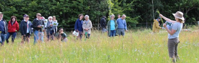 Farming For Nature Walk with Ailbhe Gerrard - August (Co.Tipperary)