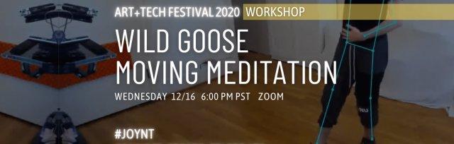 Workshop: Wild Goose Moving Meditation