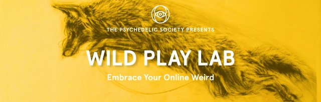 Wild Play Lab Online