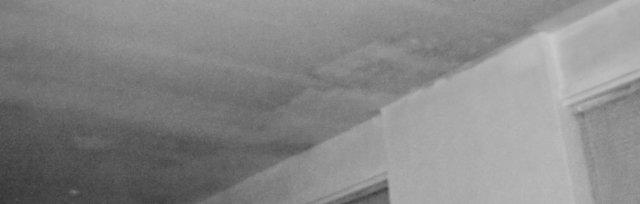 CORPORA ALIENA – INTERNATIONAL STORIES: A CELEBRATION OF DIGITAL AND ANALOGUE CONNECTIVITY