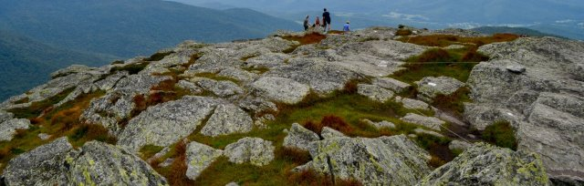 Vermont's Alpine Plant Communities