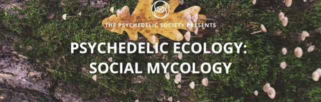 Psychedelic Ecology: Social Mycology