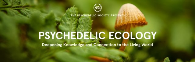 Psychedelic Ecology: A Discussion with Leading Thinkers