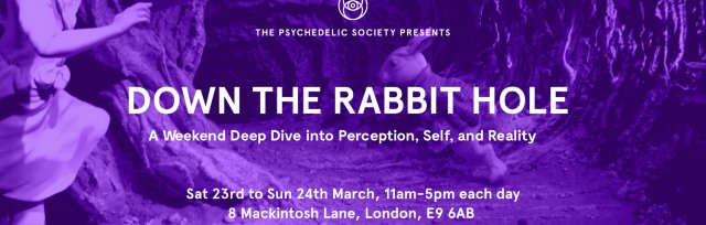 Down the Rabbit Hole: A Weekend Deep Dive into Perception, Self and Reality
