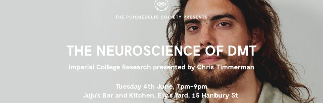 The Neuroscience of DMT: Imperial College Research, presented by Chris Timmerman