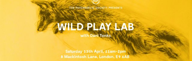 Wild Play Lab: Unlock, Release, Relax
