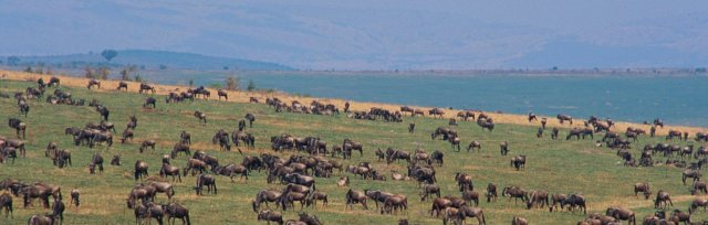 A Bird and Wildlife Safari in North Tanzania with Ken Chapman