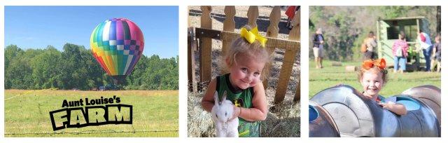 Balloon Rides at the Farm 2020-10-24