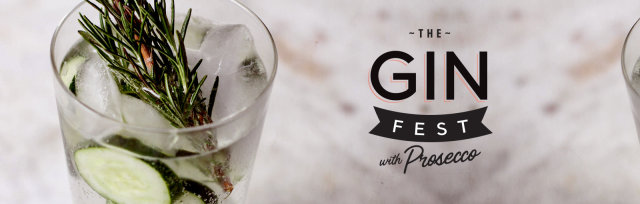 The Gin Fest - Dundee