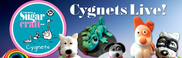 Cygnets Cupcake Competition