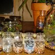 (5/25) Magick, Manifesting, and Conjuring class 101 The Basics (by ANDREA THE HERBALIST) image