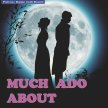 Much Ado About Nothing - Festival Players Theatre Company image