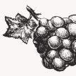 Cellar School No.6: Vin Natural image