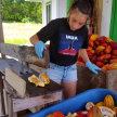 Mauna Kea Cacao Farm Tour & Chocolate Tasting image
