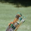 Archery July 1 image