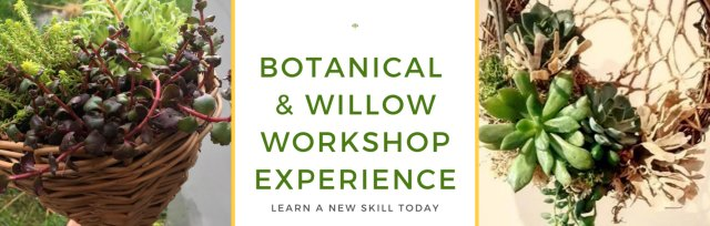 Botanical & Willow Workshop Experience - Flittons Nursery