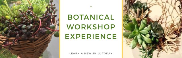 Botanical & Willow Workshop Experience - Birtley