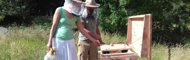 Balanced Beekeeping