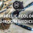 Mushroom Medicine image