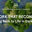 The Work That Reconnects: Coming Back to Life in Dark Times image