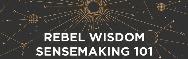 Sensemaking 101: Online Course - WAITING LIST ONLY