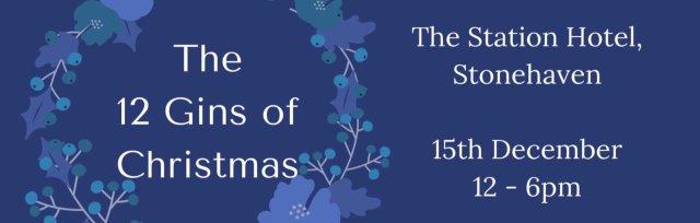 The 12 Gins of Christmas