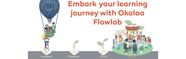 Embark with Okaloa Flowlab Team Flow (Starting Module)