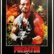 Predator (1987) PATRON PICKED NIGHT image